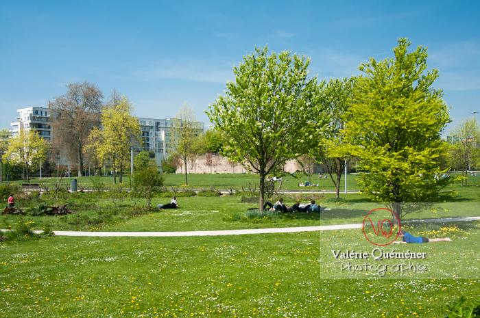Parc Henri Matisse à Lille - Réf : VQFR59-0002