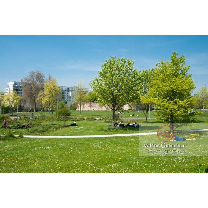 Parc Henri Matisse à Lille / Nord / Hauts-de-France - Réf : VQFR59-0002 (Q2)