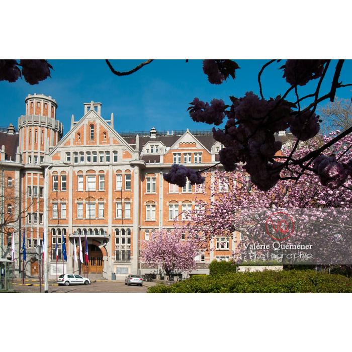 Hôtel de ville de Lille, mélange d'art déco et de néo-flamand / Nord / Hauts de France - Réf : VQFR59-0015 (Q2)