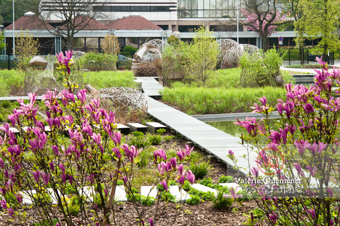 Jardin des Géants, Lille - Réf : VQFR59-0028