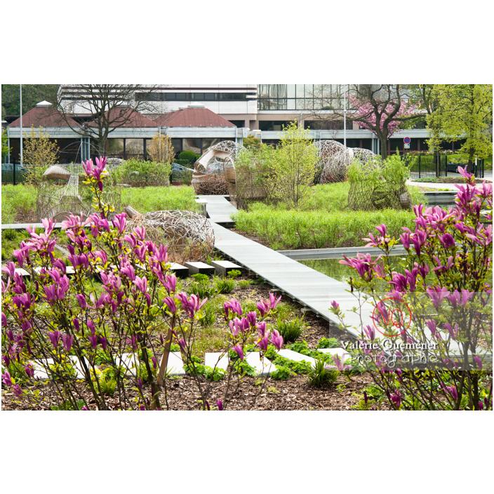 Passerelle sur le bassin dans le jardin des Géants, Lille / Nord (59) / Hauts-de-France - Réf : VQFR59-0028 (Q3)