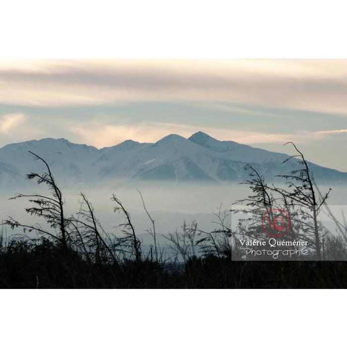 Massif du Canigou et son pic, Pyrénées-Orientales / France - Réf : VQFR66-0314 (Q2)