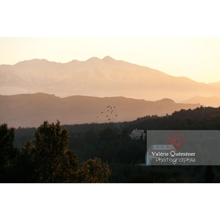 Relief du massif du Canigou à contre-jour au coucher du soleil, Pyrénées-Orientales / Occitanie / France  - Réf : VQFR66-0383 (Q2)