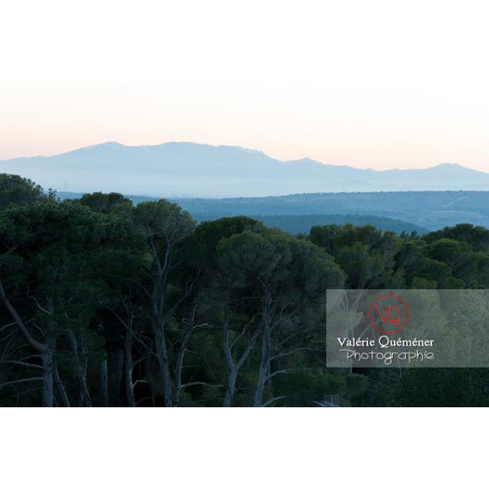 Silhouette du massif du Canigou, Pyrénées-Orientales / Occitanie / France - Réf : VQFR66-0386 (Q2)