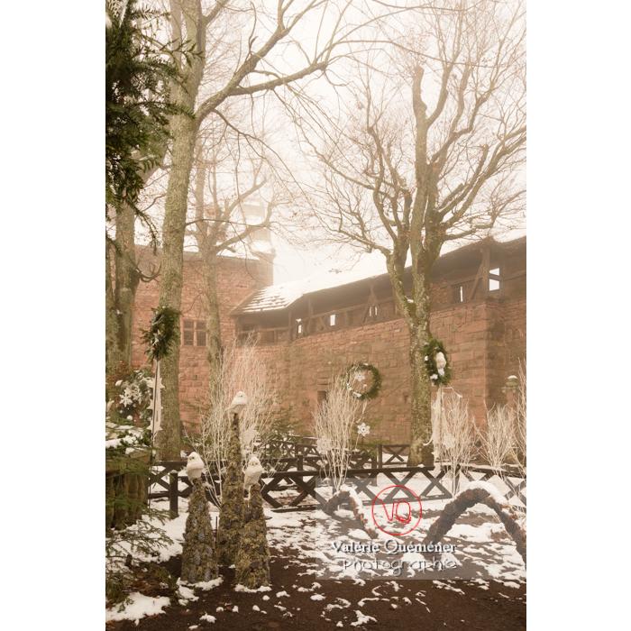 Décoration d'hiver au jardin supérieur du château du Haut-Koenigsbourg (MH) / Orschwiller / Bas-Rhin / Grand-Est - Réf : VQFR67-0152 (Q3)