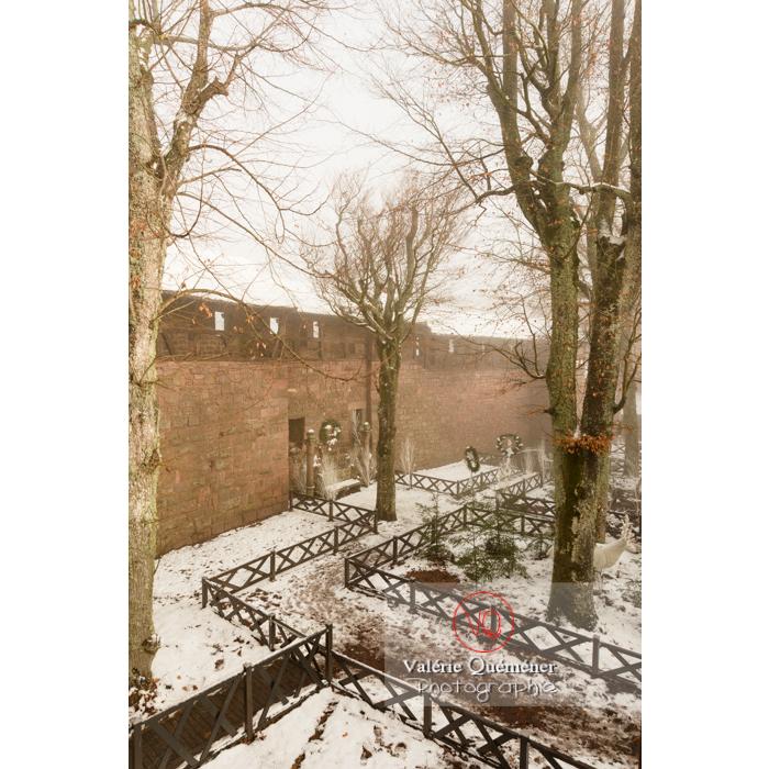 Jardin supérieur du château du Haut-Koenigsbourg (MH) / Orschwiller / Bas-Rhin / Grand-Est - Réf : VQFR67-0155 (Q3)
