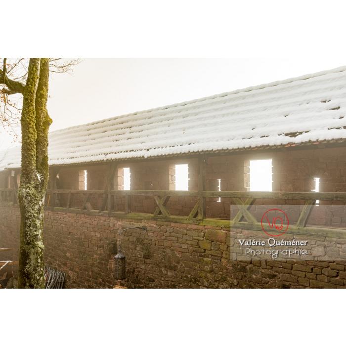 Chemin de ronde depuis le jardin supérieur du château du Haut-Koenigsbourg (MH) / Orschwiller / Bas-Rhin / Grand-Est - Réf : VQFR67-0156 (Q3)