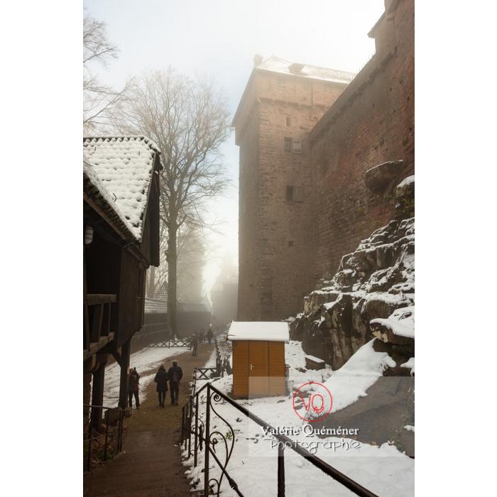 Lice du château du Haut-Koenigsbourg (MH) dans la brume / Orschwiller / Bas-Rhin / Grand-Est - Réf : VQFR67-0187 (Q3)
