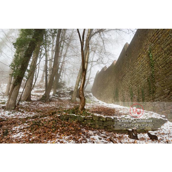 Mur d'enceinte ouest du château du Haut-Koenigsbourg (MH) / Orschwiller / Bas-Rhin / Grand-Est - Réf : VQFR67-0211 (Q3)