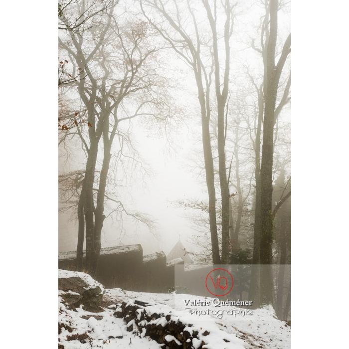 Enceinte ouest du château du Haut-Koenigsbourg (MH) / Orschwiller / Bas-Rhin / Grand-Est - Réf : VQFR67-0217 (Q3)