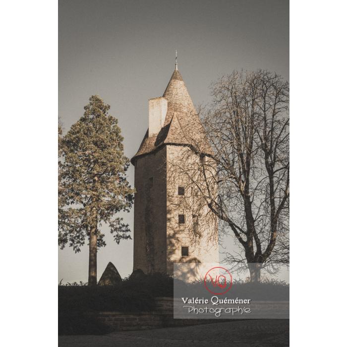 Tour Charles le Téméraire à Charolles / Saône-et-Loire / Bourgogne-Franche-Comté - Réf : VQFR71-0271-TV (Q3)