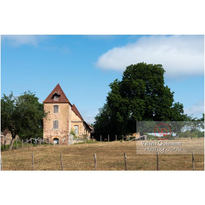 Parc du château de La Clayette (MH) / La Clayette / Saône-et-Loire / Bourgogne-Franche-Comté - Réf : VQFR71-2721 (Q3)