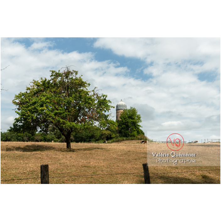 Parc du château de La Clayette (MH) / La Clayette / Saône-et-Loire / Bourgogne-Franche-Comté - Réf : VQFR71-2766 (Q3)