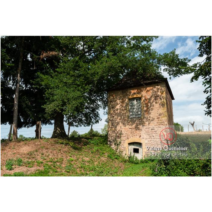 Parc du château de La Clayette (MH) / La Clayette / Saône-et-Loire / Bourgogne-Franche-Comté - Réf : VQFR71-2769 (Q3)