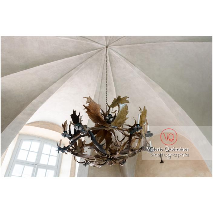 Lustre en bois de cerfs au château de Drée (MH) à Curbigny / Saône-et-Loire / Bourgogne-Franche-Comté - Réf : VQFR71-2804 (Q3)