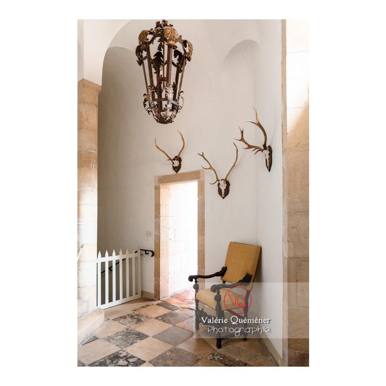 Hall d'escalier au château de Drée (MH) à Curbigny / Saône-et-Loire / Bourgogne-Franche-Comté - Réf : VQFR71-2815 (Q3)