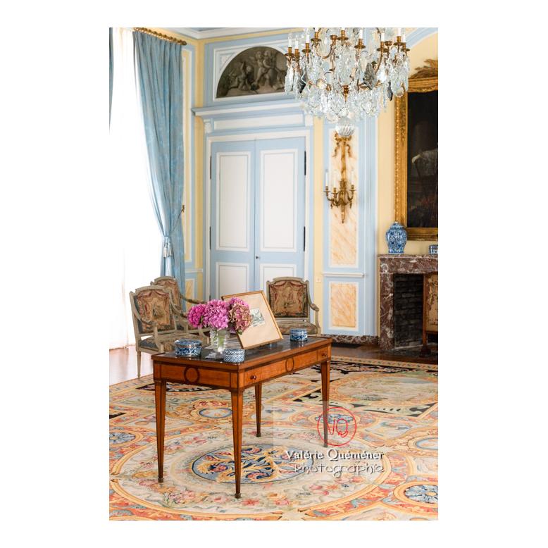 Détail d'un secrétaire au salon Louis XVI au château de Drée (MH) à Curbigny / Saône-et-Loire / Bourgogne-Franche-Comté - Réf : VQFR71-2831 (Q3)