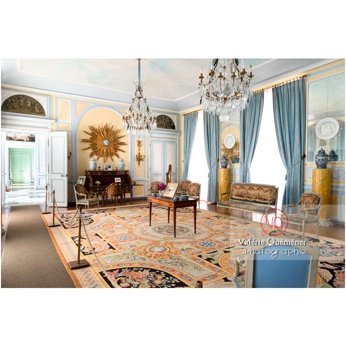 Salon Louis XVI au château de Drée (MH) à Curbigny / Saône-et-Loire / Bourgogne-Franche-Comté - Réf : VQFR71-2832 (Q3)