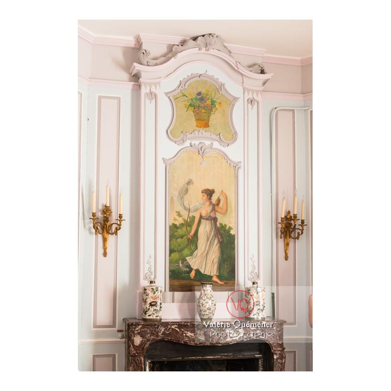 Boiserie et peinture murale au château de Drée (MH) à Curbigny / Saône-et-Loire / Bourgogne-Franche-Comté - Réf : VQFR71-2853 (Q3)