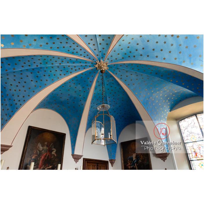 Plafond peint dans la chapelle du château de Drée (MH) à Curbigny / Saône-et-Loire / Bourgogne-Franche-Comté - Réf : VQFR71-2860 (Q3)