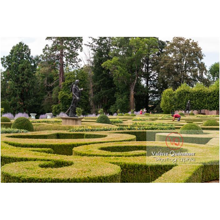 Jardin remarquable à la française avec parterre de broderie de buis au château de Drée (MH) à Curbigny / Saône-et-Loire / Bourgogne-Franche-Comté - Réf : VQFR71-2877 (Q3)
