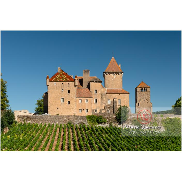 Château de Pierreclos et vignes / Saône-et-Loire / Bourgogne-Franche-Comté - Réf : VQFR71-3198 (Q3)