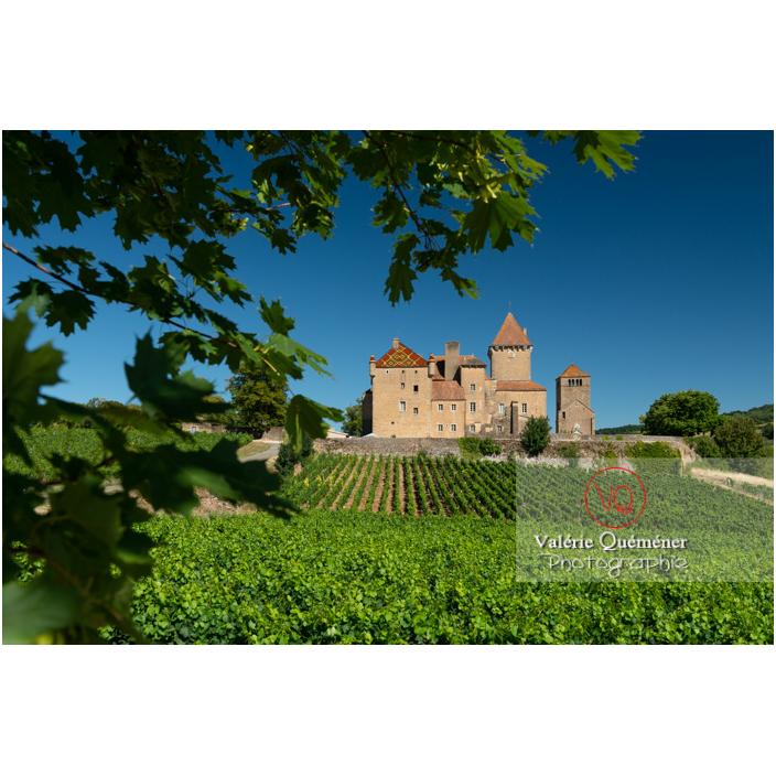 Château de Pierreclos derrière un champ de vignes / Saône-et-Loire / Bourgogne-Franche-Comté - Réf : VQFR71-3200 (Q3)