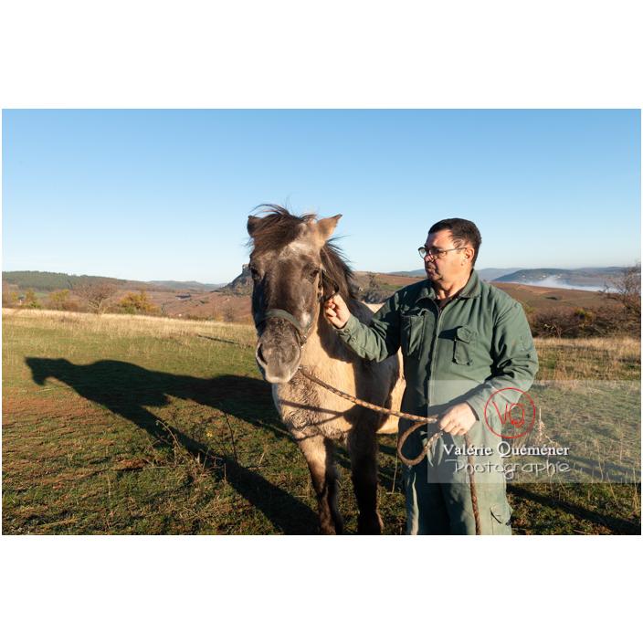 Préparation d'un cheval Konik Polski de la roche Solutré pour la transhumance d'hiver / Saône-et-Loire (71) / Bourgogne-Franche-Comté - Réf : VQFR71-4356 (Q3)