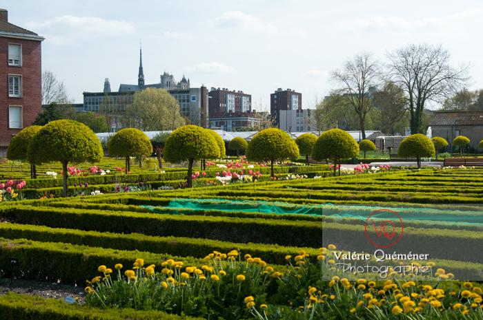 Jardin de plantes, Amiens - Réf : VQFR80-0006