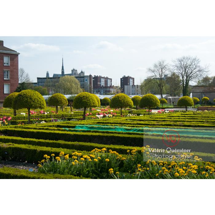 Jardin des plantes, Amiens / Somme / Hauts-de-France - Réf : VQFR80-0006 (Q2)