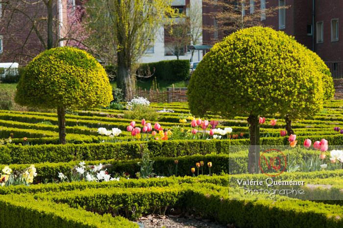 Jardin de plantes, Amiens - Réf : VQFR80-0007