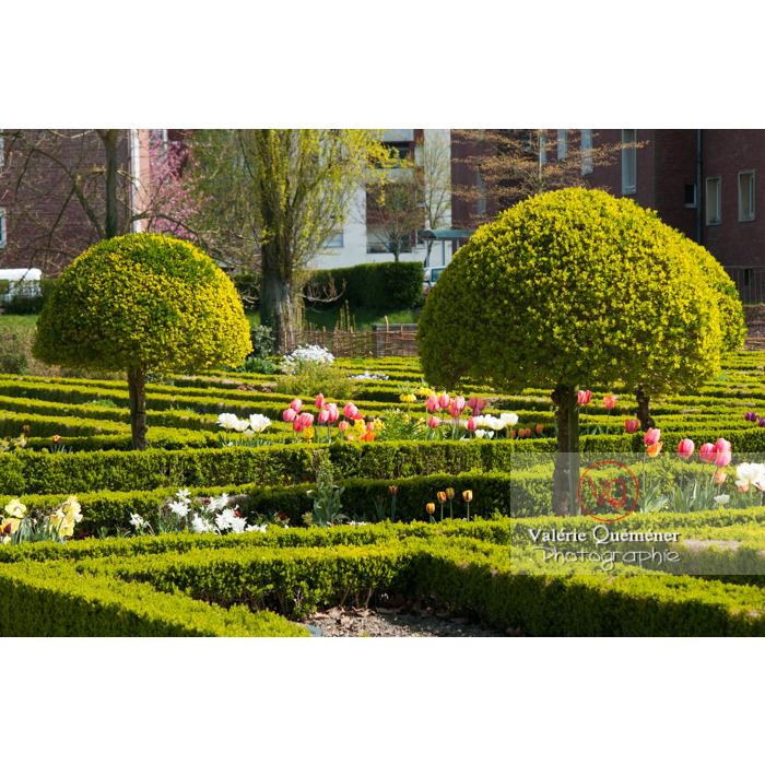 Jardin des plantes, Amiens / Somme / Hauts-de-France - Réf : VQFR80-0007 (Q2)