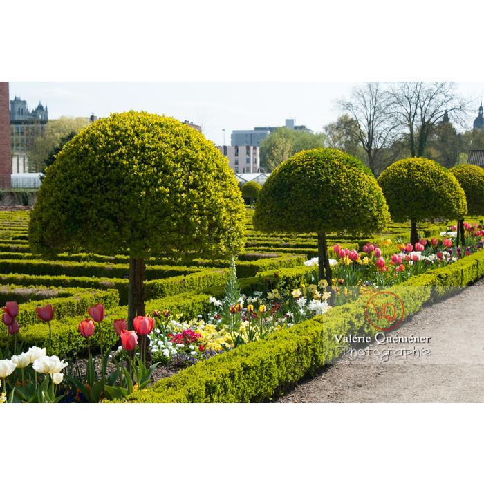 Jardin des plantes, Amiens / Nord / Hauts-de-France - Réf : VQFR80-0008 (Q2)