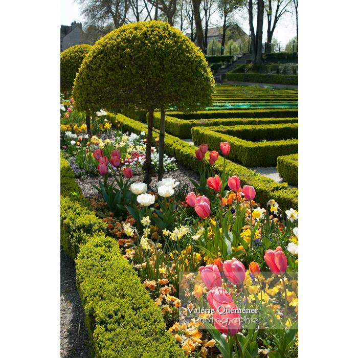 Jardin des plantes, Amiens / Somme / Hauts-de-France - Réf : VQFR80-0009 (Q2)