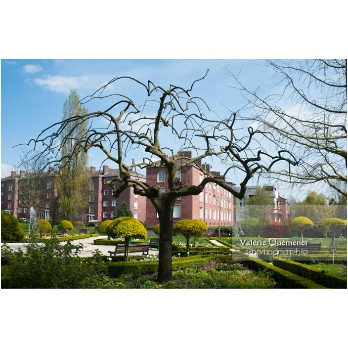 Jardin des plantes d'Amiens / Somme / Hauts-de-France - Réf : VQFR80-0011 (Q2)