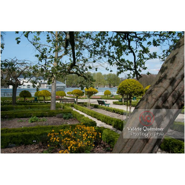 Jardin des plantes d'Amiens / Somme / Hauts-de-France - Réf : VQFR80-0016 (Q2)