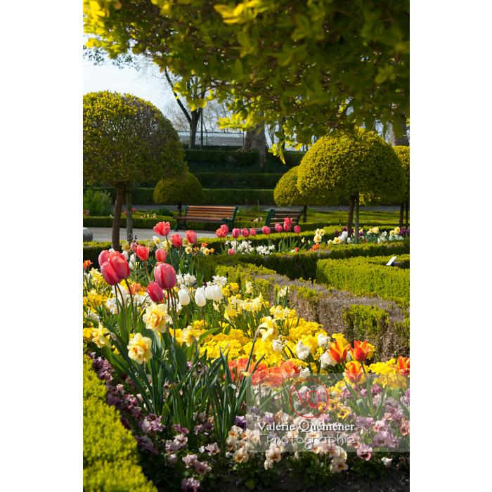 Jardin des plantes, Amiens / Somme / Hauts-de-France - Réf : VQFR80-0017 (Q2)
