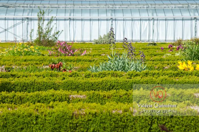 Jardin de plantes, Amiens - Réf : VQFR80-0018