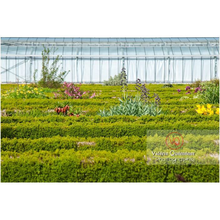 Jardin des plantes d'Amiens / Somme / Hauts-de-France - Réf : VQFR80-0018 (Q2)