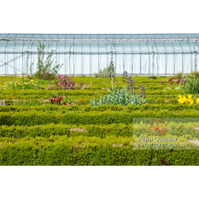 Jardin des plantes, Amiens / Somme / Hauts-de-France - Réf : VQFR80-0018 (Q2)