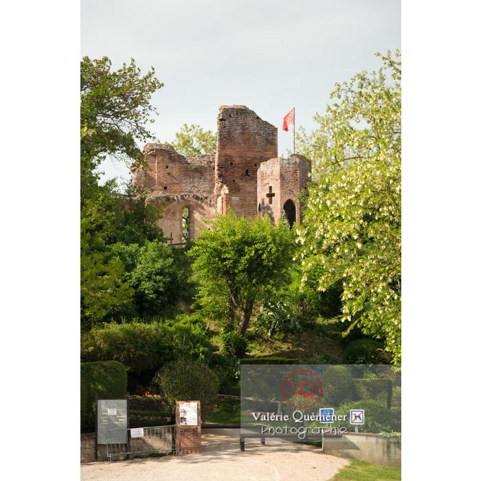 Château de Saint-Sulpice-la-Pointe en forme de croix / Tarn / Occitanie - Réf : VQFR81-0263 (Q3)