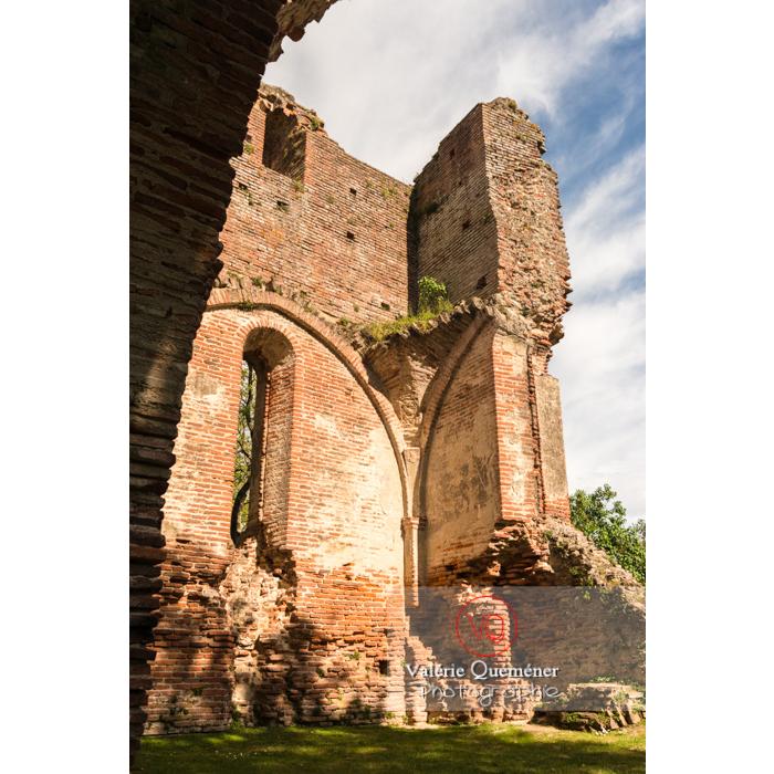 Ruines du château de Saint-Sulpice-la-Pointe en forme de croix / Tarn / Occitanie - Réf : VQFR81-0267 (Q3)