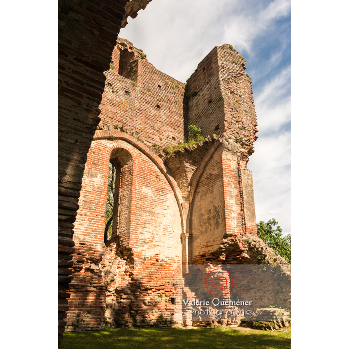 Ruines du château de Saint-Sulpice-la-Pointe / Tarn / Occitanie - Réf : VQFR81-0267 (Q3)