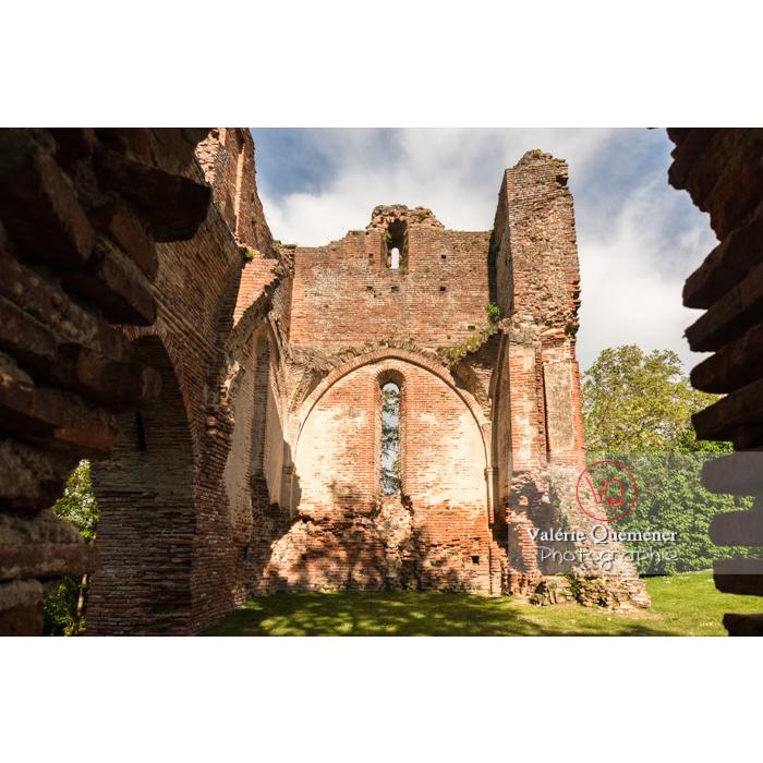Ruines du château de Saint-Sulpice-la-Pointe en forme de croix / Tarn / Occitanie - Réf : VQFR81-0269 (Q3)