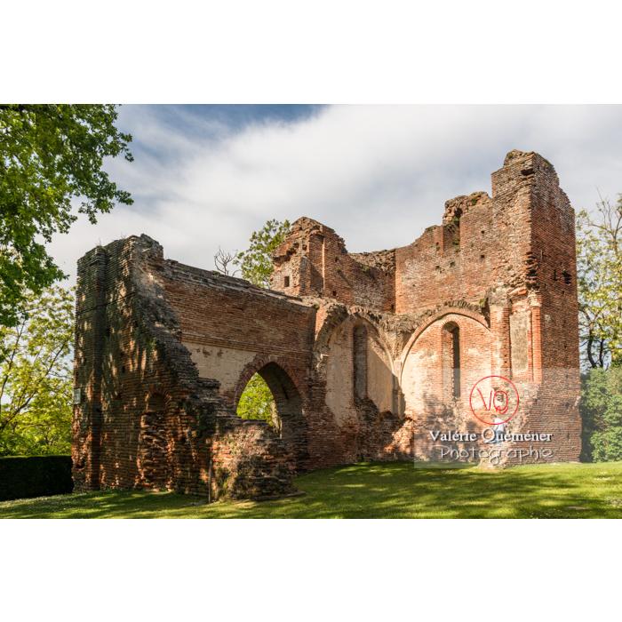 Ruines du château de Saint-Sulpice-la-Pointe en forme de croix / Tarn / Occitanie - Réf : VQFR81-0271 (Q3)