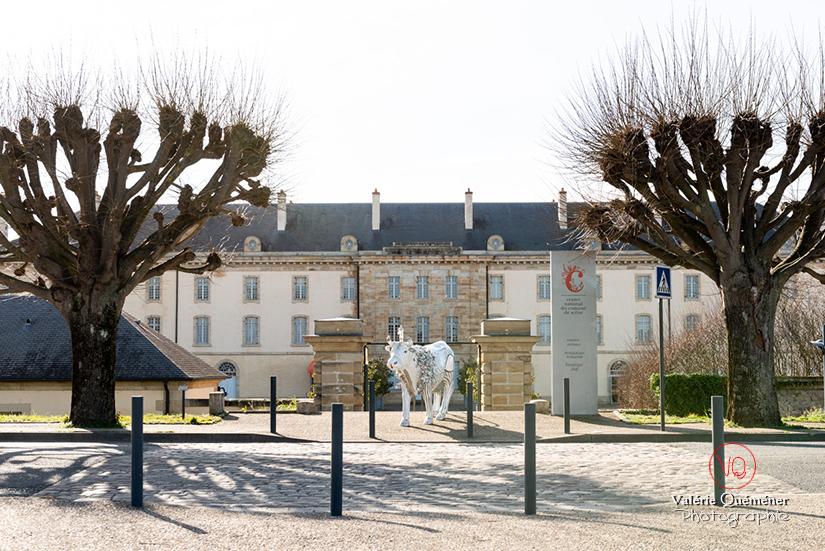 CNCS à Moulins | © Valérie Quéméner - Réf : VQFR03-0336