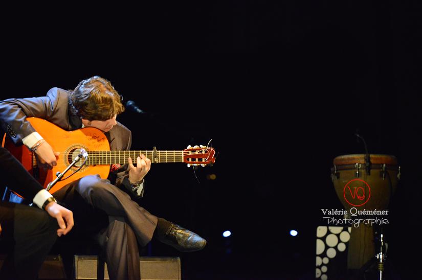Guitariste - Festival ibérique 2014 à Colomiers (Haute-Garonne) | © Valérie Quéméner