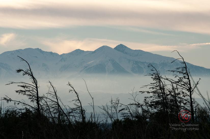 Massif du Canigou, Pyrénées-Orientales | © Valérie Quéméner - Réf : VQFR66-0314