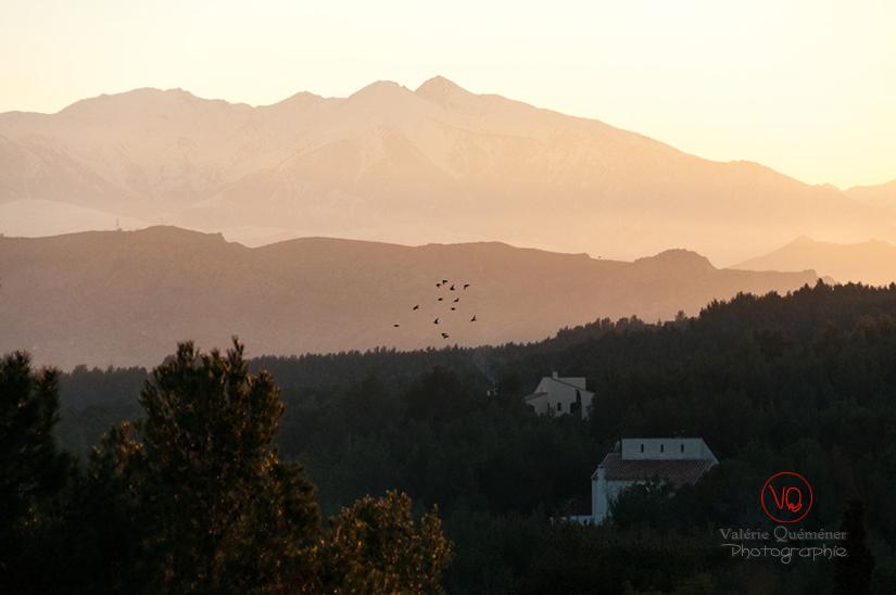 Massif du Canigou, Pyrénées-Orientales | © Valérie Quéméner - Réf : VQFR66-0383